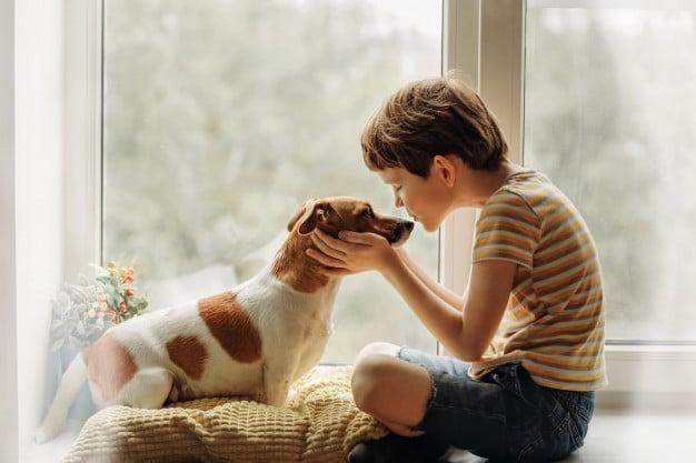 little-boy-kisses-dog-nose-window