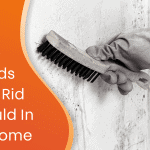 simple methods to get rid of mould in your home graphic